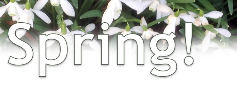 Springheader